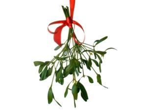 Letterbalm Mistletoe