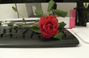 Letterbalm Rose on a Desk